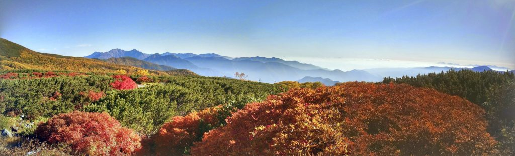 The rainbow of Koyo, or fall colors of the high alpine grasses and shrubs on the mountainside.
