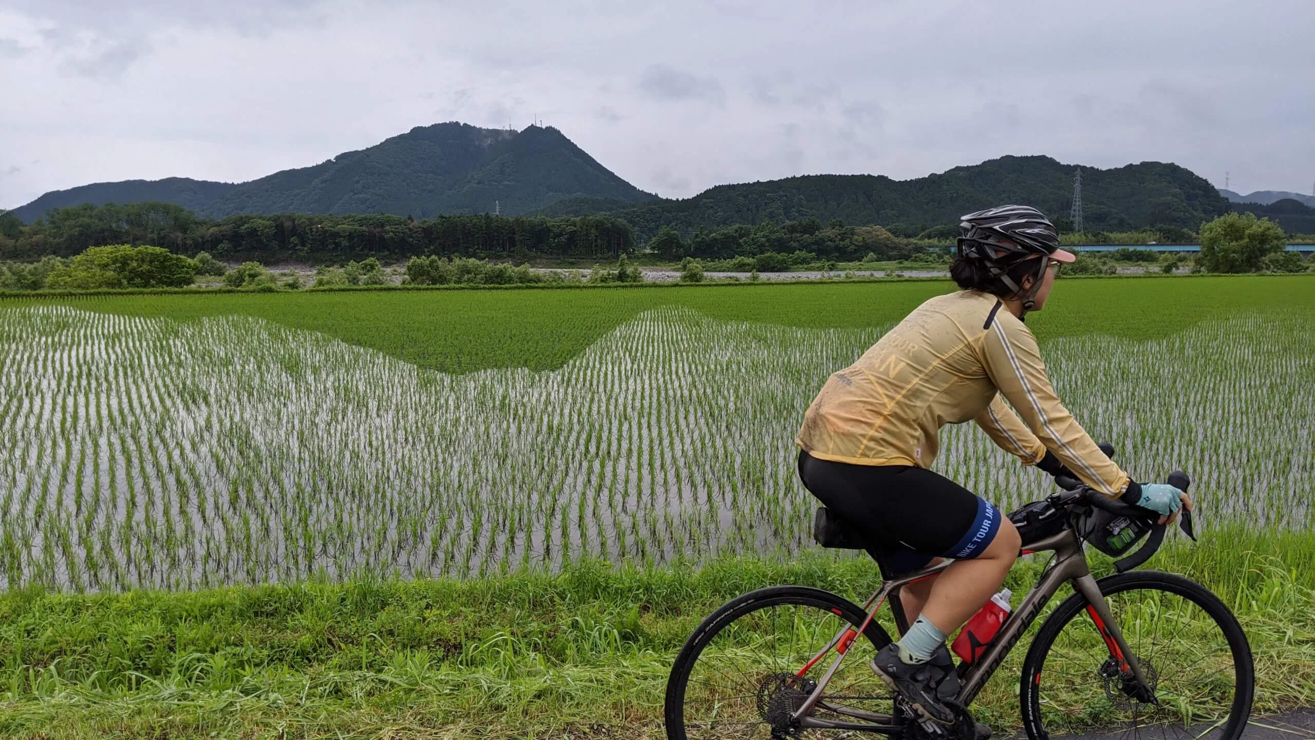 The reflections in the newly planted rice fields can be mesmerizing as you ride by.