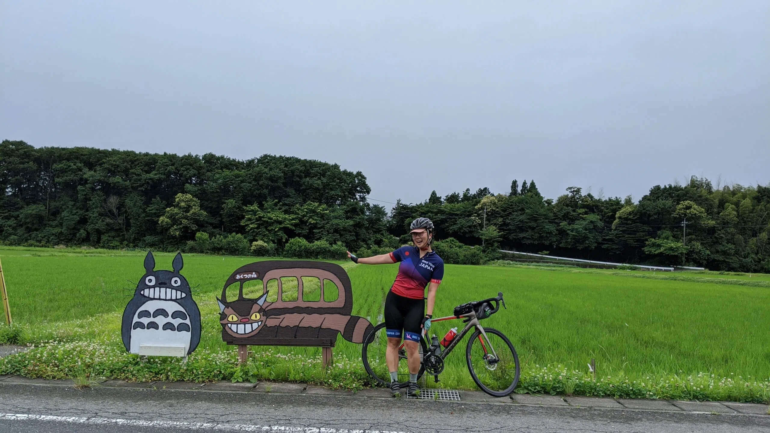 Michelle spotted a wild Totoro in Tochigi Prefecture!
