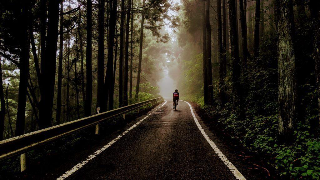 The Mystical Forest Roads up Mt Haruna.