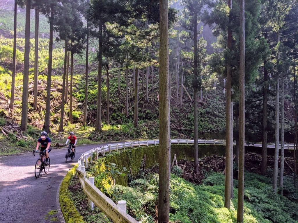 Riding the Komorebi of the Kiryu Alps
